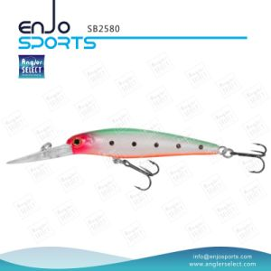 Plastic Lure Artificial Hard Bait Deep Diving Fishing Tackle with Vmc Treble Hooks (SB2580) pictures & photos