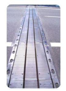 Laminated Rubber Expansion Joint with Largement pictures & photos