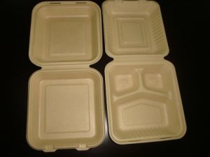 8inch 3compartment Biodegradable Sugarcane Clamshell pictures & photos