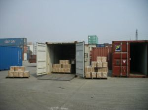 DDU Logistics Service From Shanghai to Klaipeda Lithuania pictures & photos