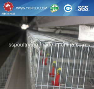 China Chicken Layer Breeding Cage with Automatic Poultry Equipment pictures & photos