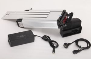 36V-10ah Rack Type Li-Mn E-Bike Battery with Charger pictures & photos