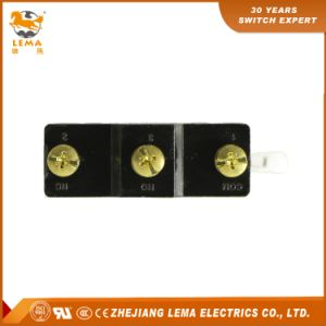Lema Lz15-Gw25-B Hinge Large Roller Lever Micro Switch CCC Ce UL Approvals pictures & photos