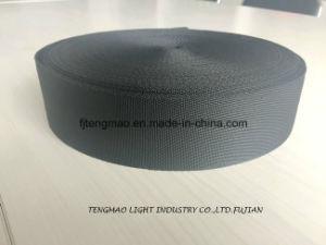 450d Black Green Polypropylene Webbing pictures & photos