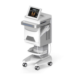 Smas Hifu Skin Lifting Wrinkle Removal Ultrasound Beauty Machine pictures & photos
