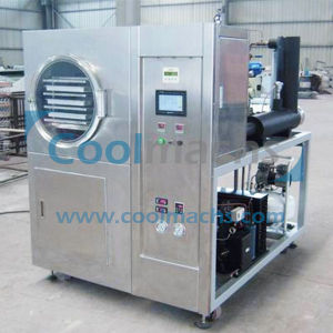 Lab Vacuum Freeze Dryer/Trial Use Vacuum Freeze Dryer pictures & photos