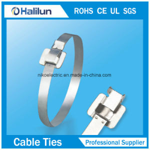 201 Ss Cable Tie Wing Lock Type for Shipbuilding pictures & photos