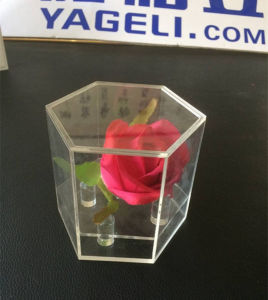 Hot Sale Crystal Hexagonal Acrylic Flower Box for Gift pictures & photos