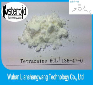 USP Local Anesthetic Tetracaine HCl CAS 136-47-0 for Reliver Pain pictures & photos