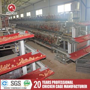 Poultry Farm Used a Type Ladder Laying Hen Chicken Cages pictures & photos