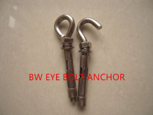 Stainless Steel Eye Bolt Anchor pictures & photos