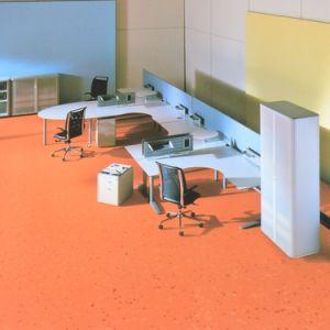 Homogeneous PVC Flooring Roll pictures & photos