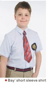 Cheap Price Boys School Uniform Shirt of Short Sleeve -Su39 pictures & photos