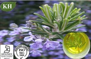 100% Natural Rosemary Oil 98% pictures & photos