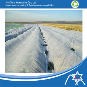 PP Non-Woven Fabric for Land Cover pictures & photos