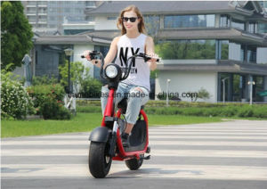 Harley Citycoco Adult 2 Wheel Electric Scooter with One Seat pictures & photos