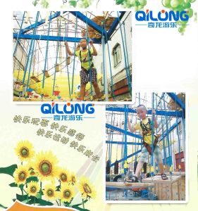 Design with Electric & Jungle Style for Indoor Playground (QL-1125C) pictures & photos