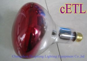 R125 Infrared Warm Light Pet Heat Lamp pictures & photos
