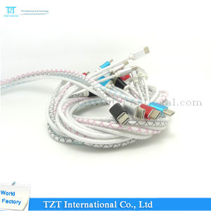 High Quality Mobile Phone Micro USB Cable for Samsung/iPhone (Type-LC) pictures & photos