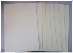 31X31cm Photobook Sheet Adhesive PVC Sheet pictures & photos