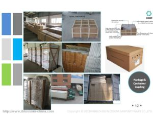 Corner Sector Door Glass Shower Enclosure (BLS-9827) pictures & photos