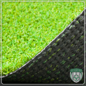 High Density Artificial Synthetic Golf Putting Green Grass pictures & photos