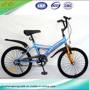 20′′mini Exercise Bicycle/Mountain Bike for Children (SH-MTB015) pictures & photos