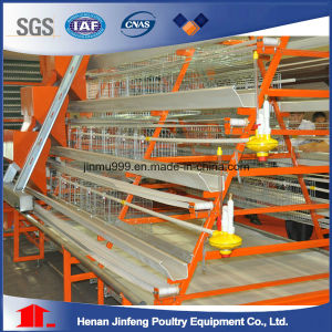 Jaulas Aves / Gallinas Battery Hen Cages (BDT025-JF-25) pictures & photos