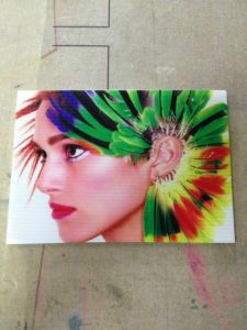 Digital PVC Sheet Printing Machine (Colorful1625) pictures & photos