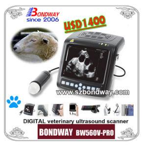Digital Wrist-Top Veterinary Ultrasound Scanner Swine Ultrasound Small Animal Ultrasound