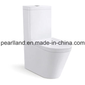 Watermark Washdown Two-Piece Toliet (CE-AZ2057) pictures & photos