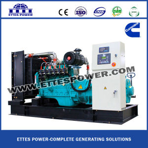 Natural Gas/Biogas Power Generating Set (20KW-2000KW)