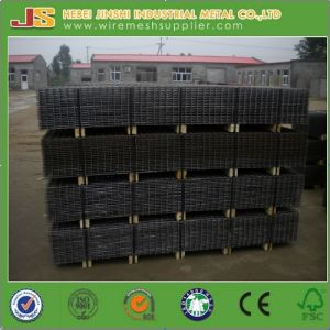 Reinforcement Welded Panel From Factory pictures & photos