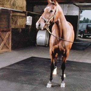 Animal Rubber Mat, Cow Rubber Mat, Horse Rubber Mat (GM0421) pictures & photos