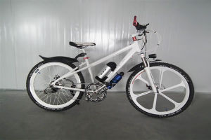 Economical E-Bike (EB02-26)