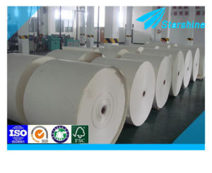 Two Side PE Coated Paper for Food Wrapping