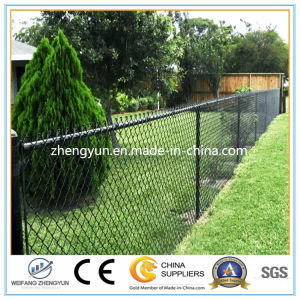 Galvanized PVC Coated Chain Link Fence for Farm pictures & photos