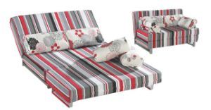 Function Sofa, Fabric Sofa, Sofa Bed (RB0937)