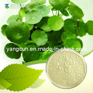 Natural Centella Asiatica Extract Asiatic Acid 95% pictures & photos