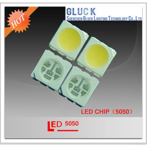 Professional SMD LED 5050 Cold White