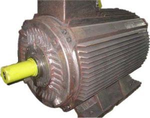 Y2-355L Cast Iron Body W/100% Polishing