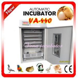 400 Eggs Fully Automatic Chicken Egg Incubator Va-440 pictures & photos