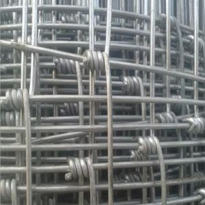 Wholesale Bulk Cattle Fence/Sheep Wire Fencing pictures & photos