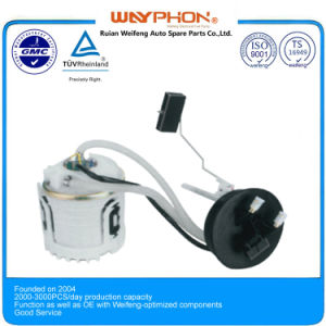 1h0919051aj, E10288m, 72198155 Electric Fuel Pump Assembly for Vw Golf (WF-A03-3) pictures & photos