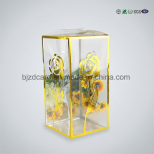 Customized Clear Plastic Food Packaging Box pictures & photos