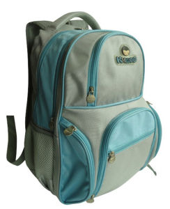 2012 New Style School Backpack (HD00112)