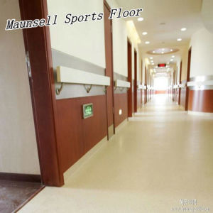 China Factory Top Quality PVC/Homogeneous Floor for Airport/Subway/Office pictures & photos