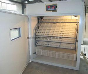 (528 Eggs) Full Automatic Incubator (AS-5)