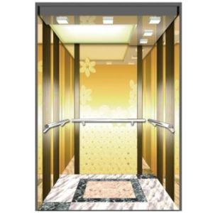 Small Machine Room Passengers Elevator Residential Lift /Home Elevator Use Japan Technology (optional) pictures & photos