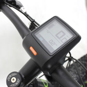 Hot Sale Suppliers Electric Fat Bike for Sale JB-TDC28L-F pictures & photos